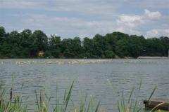 Kober-Sport-Events_2012-06-23_022